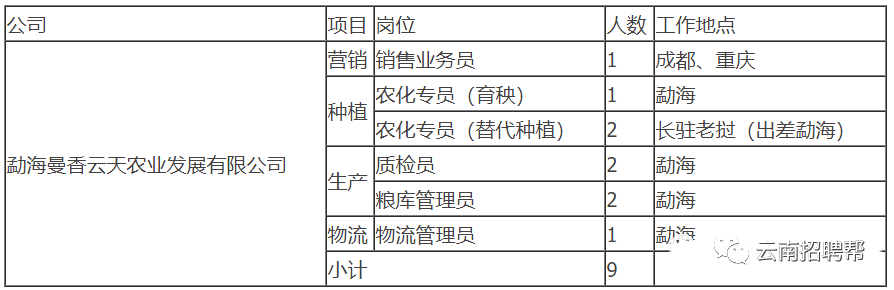 国企|2021年云南云天化集团投资有限公司招聘 五险一金